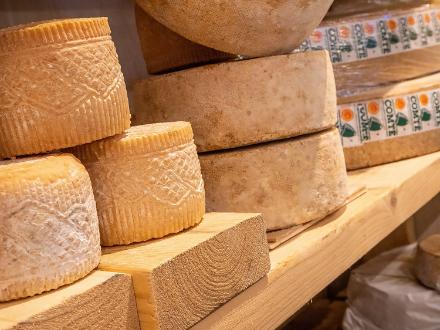 Millésime & Affinage | sélection de fromages